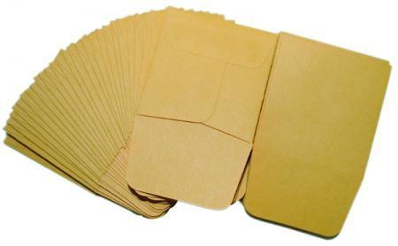 Paper Coin Envelopes -- Kraft