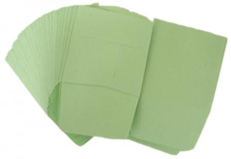 Paper Coin Envelopes -- Green
