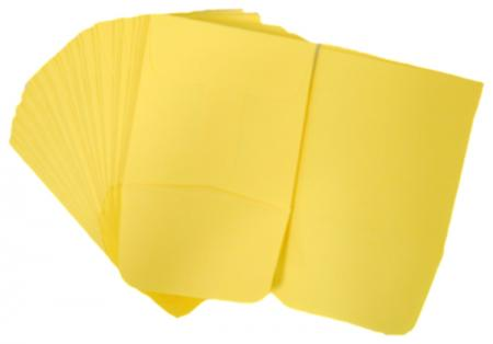 Paper Coin Envelopes -- Yellow